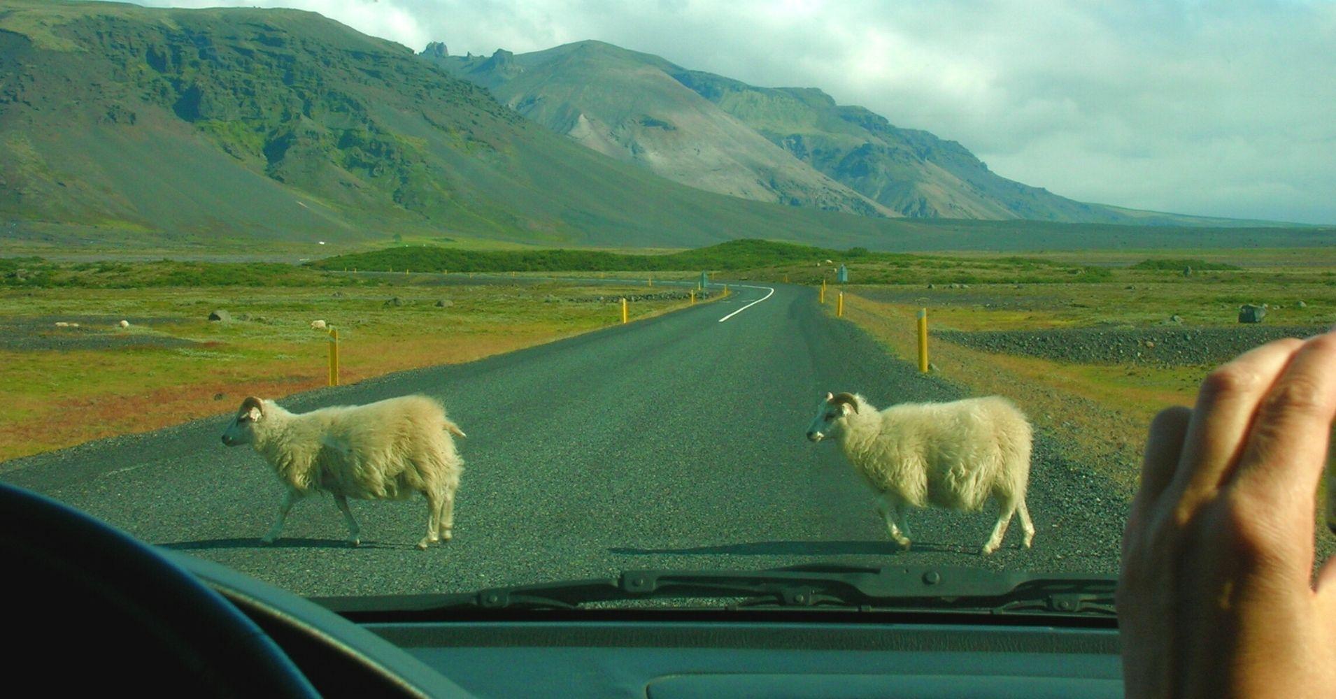 Arenales de Skeidarársandur. Road Trip por Islandia.