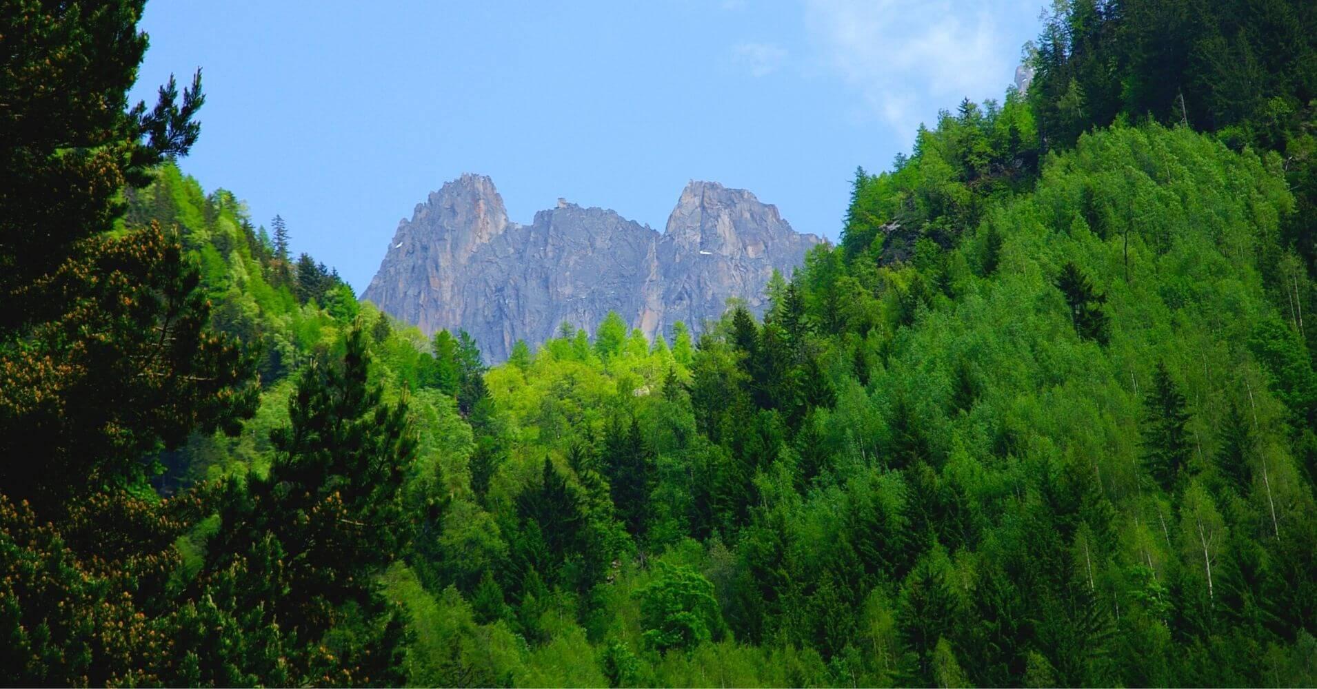 Bosques y Altas Montañas. Francia, Suiza, Italia. Cordillera de los Alpes.