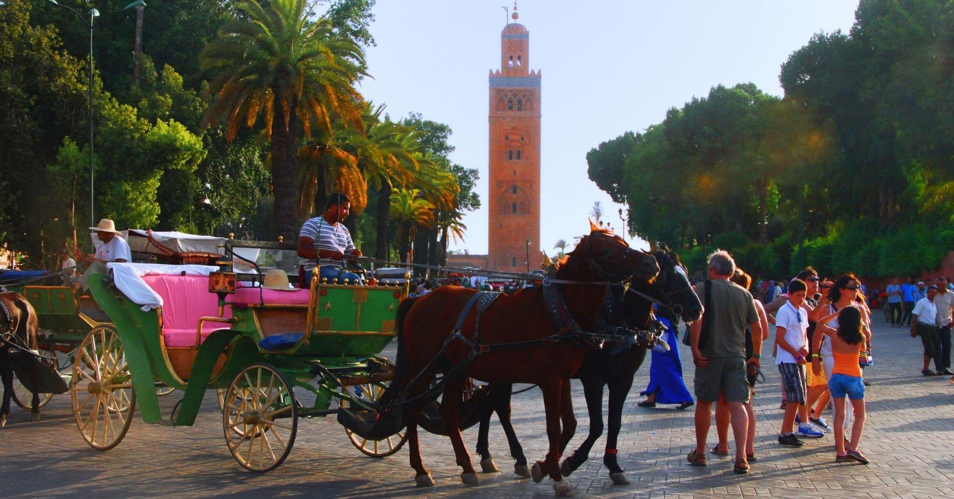 Calesas en Marrakech. Marruecos.