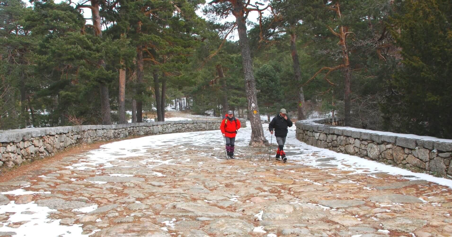 Calzada Romana del Valle de La Fuenfría. Las Dehesas. Cercedilla. Comunidad de Madrid.