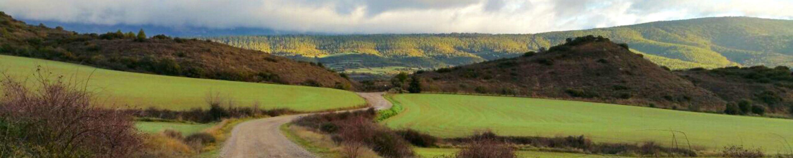 Camino Santiago Aragonés 4