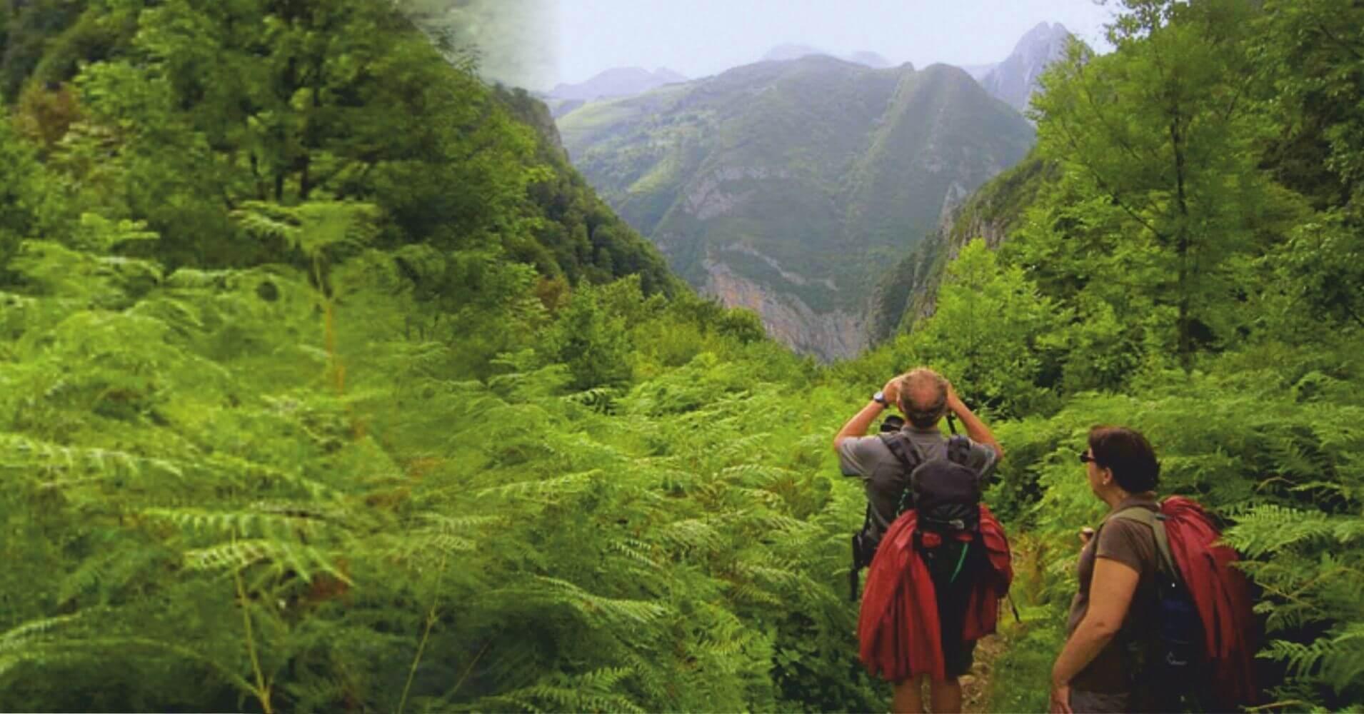 Chemin de la Mâture. Valle de Aspe en Etsaut. Pirineos Atlánticos. Nueva Aquitania. Francia.