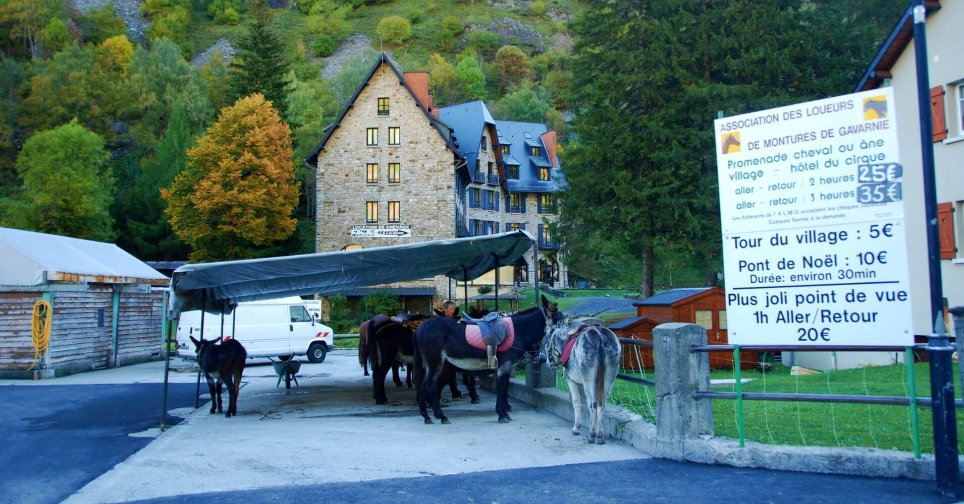 Tour en Borrico, Departamento de Altos Pirineos. Occitania. Francia.