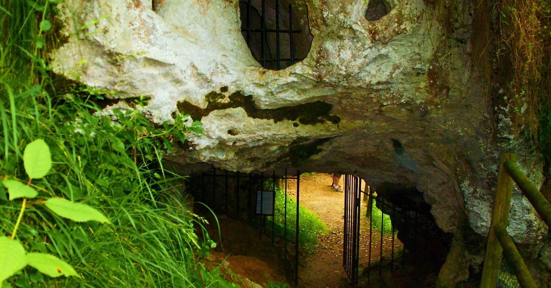 Cueva del Buxu. Cardes, Concejo de Cangas de Onís. Asturias. España.