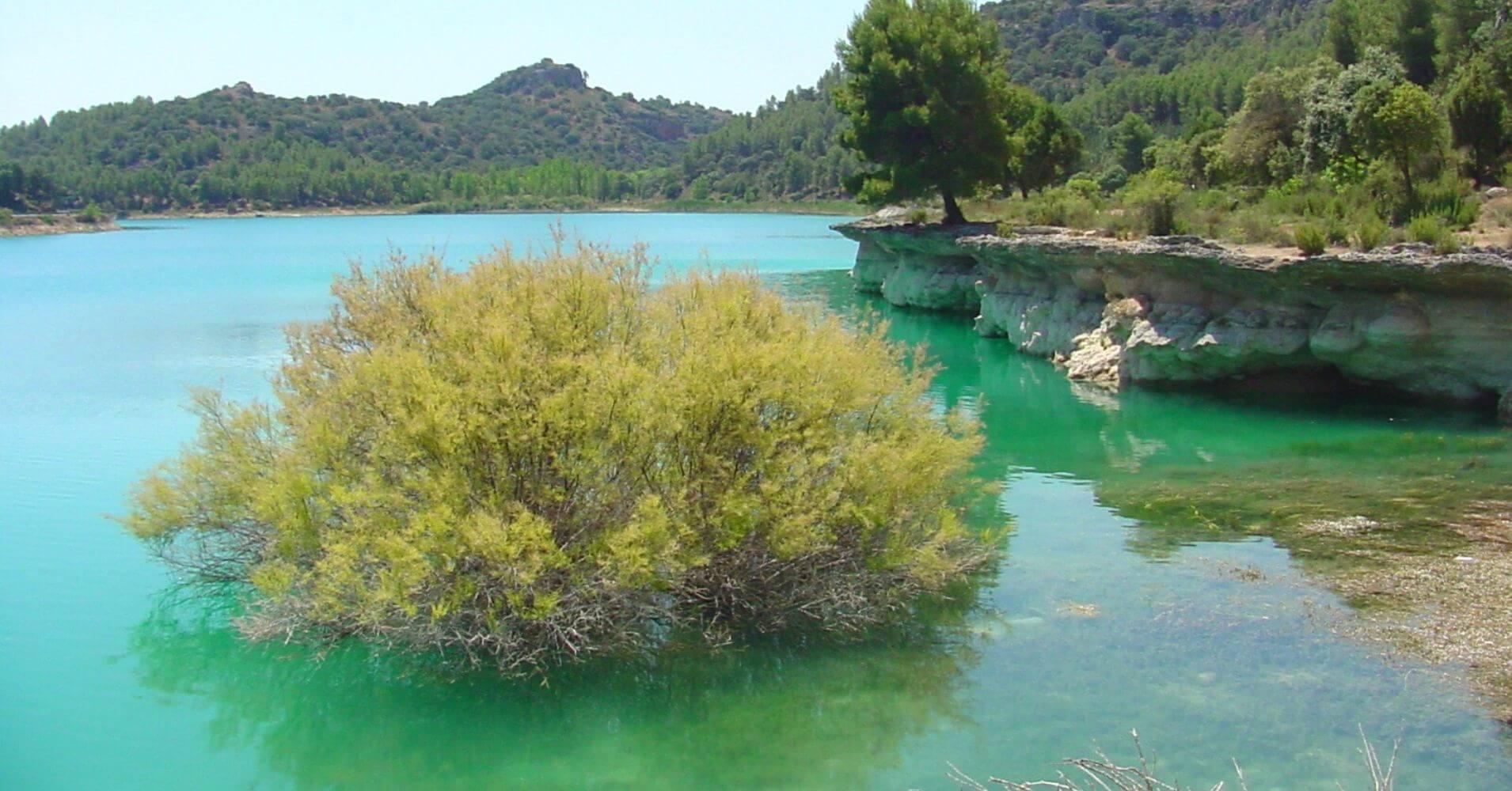 En el Parque Natural Lagunas de Ruidera. Ciudad Real, Albacete. Castilla la Mancha.