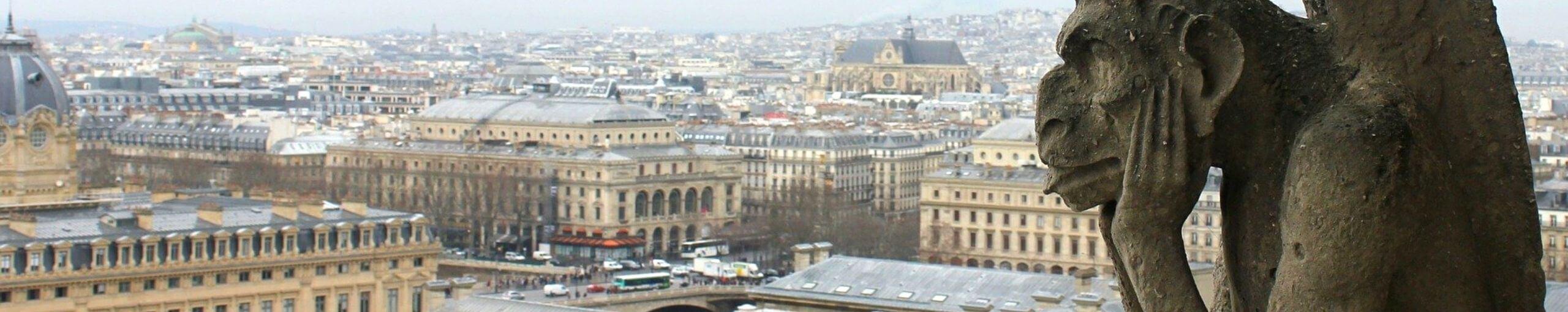 Gárgola Catedral de Notre Dame, París. Francia.