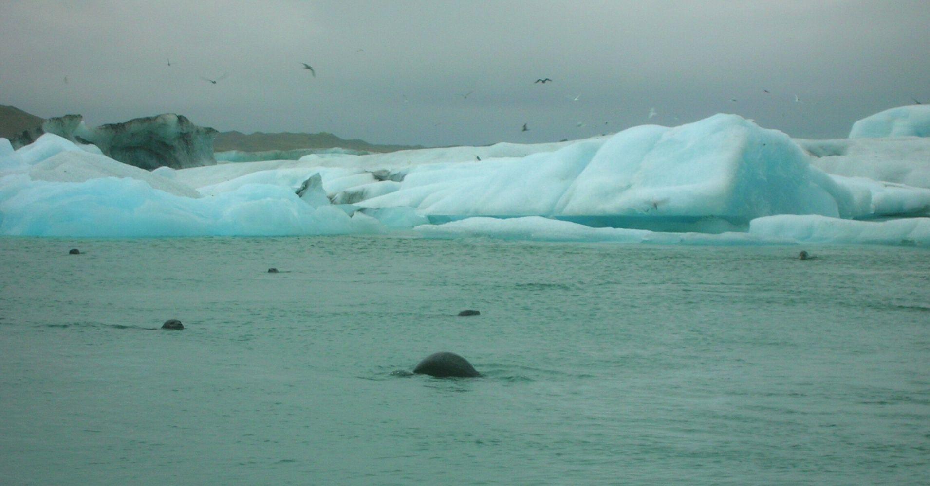 Iceberg Lago Jokulsarlon. Road Trip por Islandia.