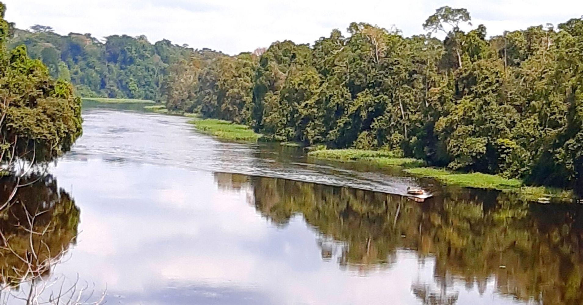 Navegando por el Rio Nyong. Camerún.