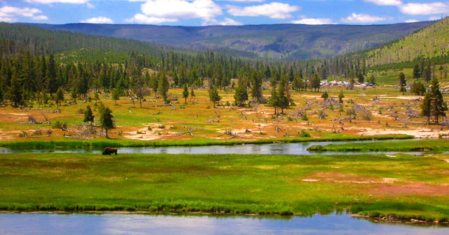 Paisajes del Parque Nacional de Yellowstone. Wyoming, Estados Unidos.