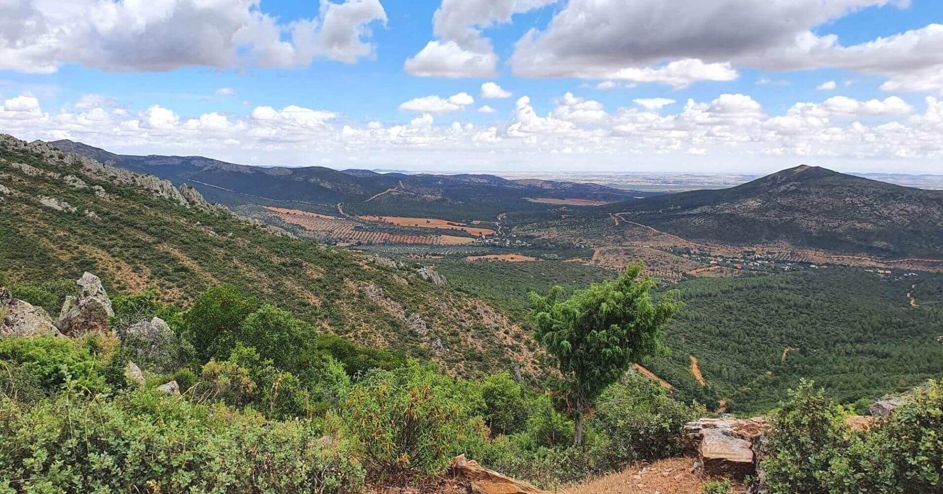 Panorámicas desde La Sierra Calderina y Pico Chupadero. Montes de Toledo. Madridejos, Castilla la Mancha.