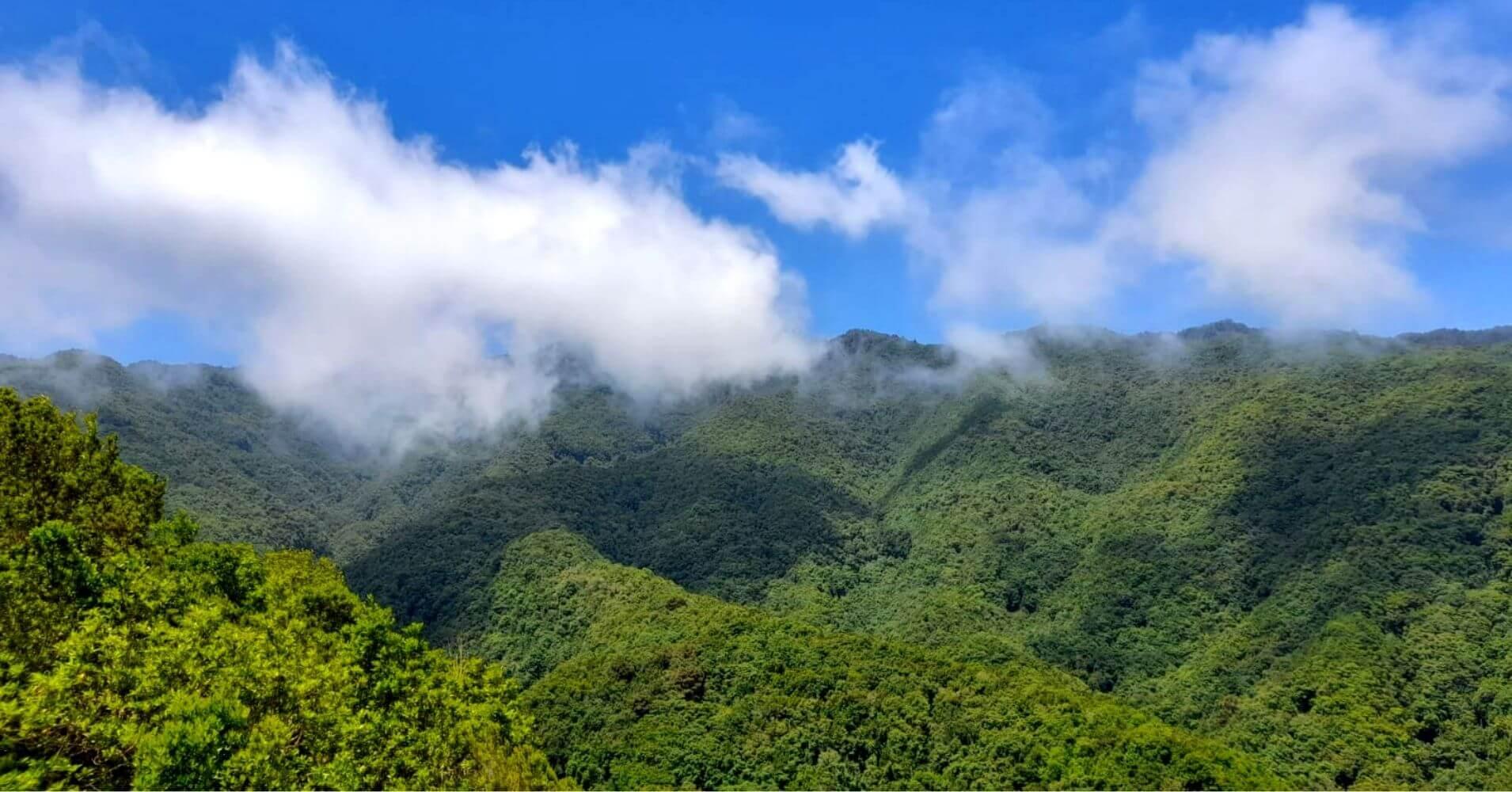 Parque Nacional de la Caldera de Taburiente. La Palma, Islas Canarias.