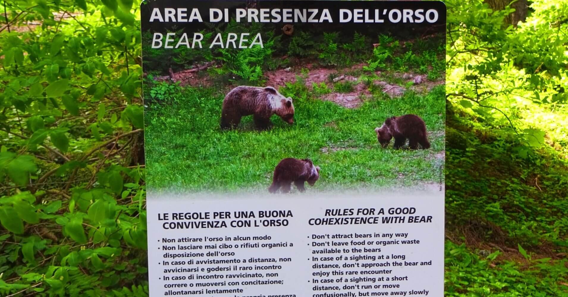 Cartel Peligro de Osos. Madona di Campiglio, Dolomitas de Brenta. Belluno, Véneto. Italia.
