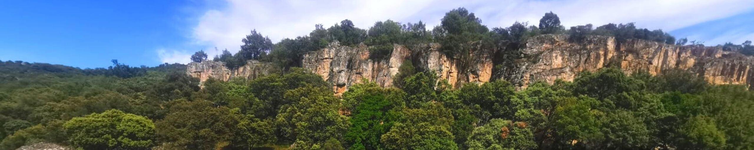 Parque Natural Valle de Alcudia y Sierra Madrona. Ciudad Real, Castilla La Mancha.