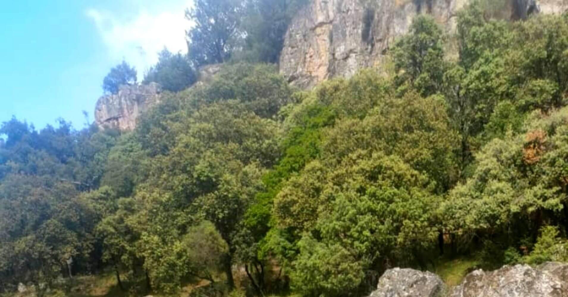 Parque Natural Valle de Alcudia y Sierra Madrona en Ciudad Real. Castilla La Mancha.