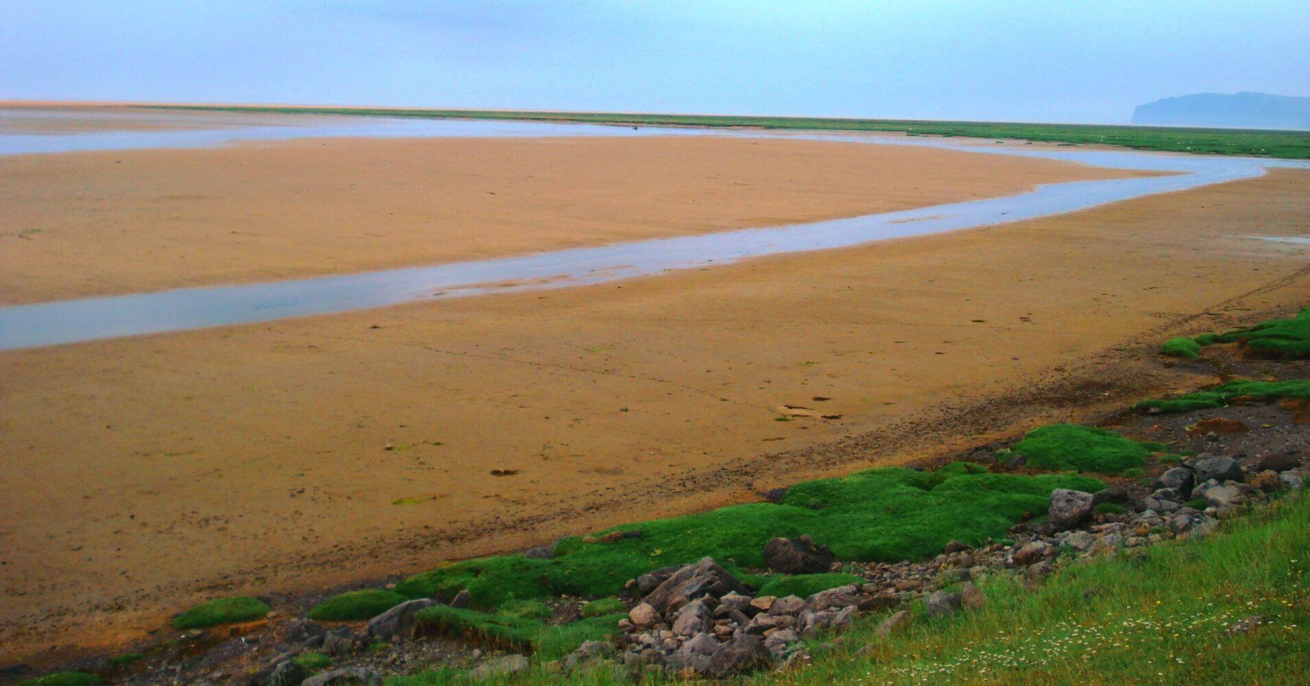 Playa de Rauðisandur. Fiordos del Oeste. Vestfirðir. Islandia.
