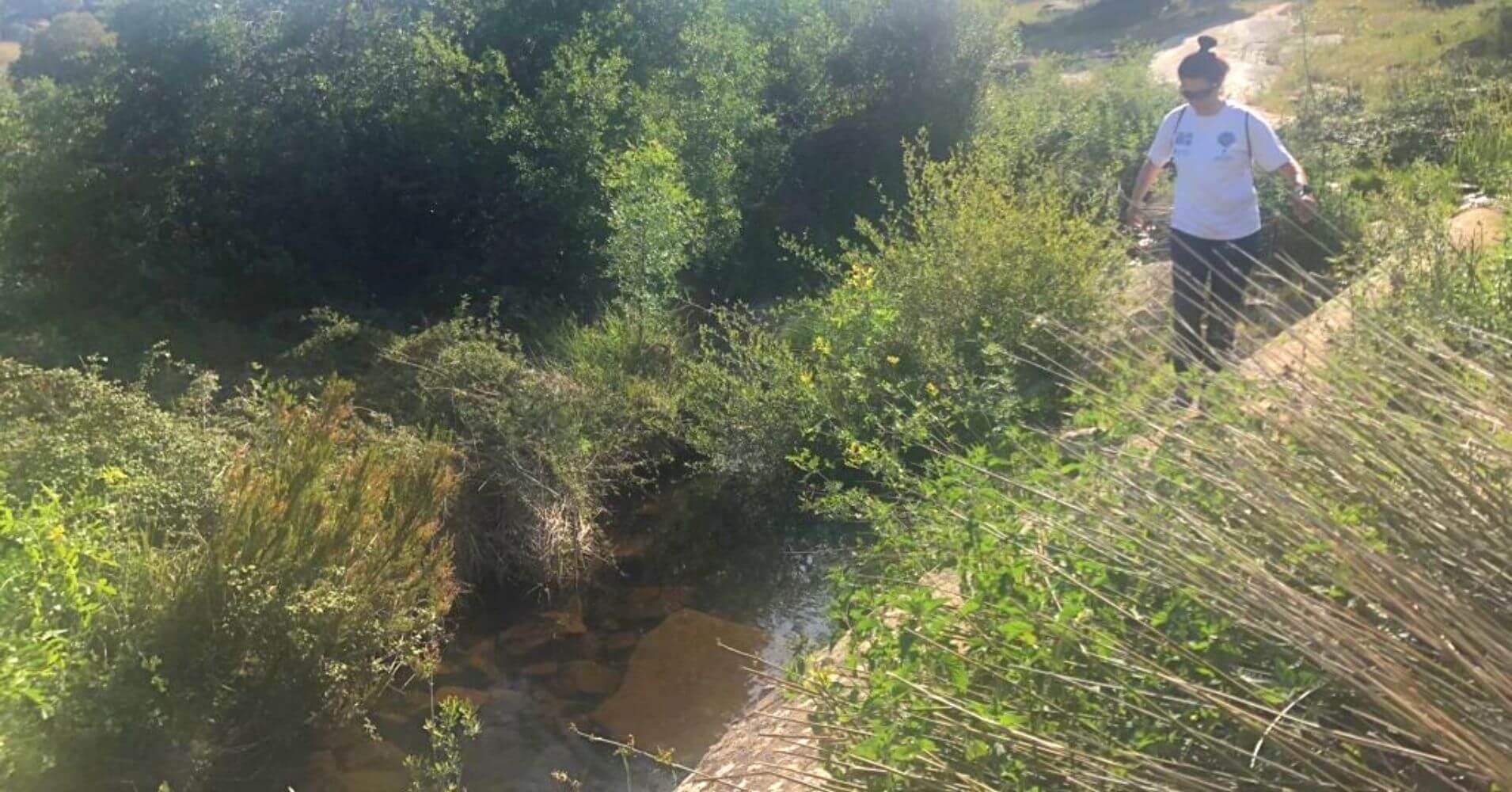 Río Cedena. Hontanar, Montes de Toledo. Castilla La Mancha.