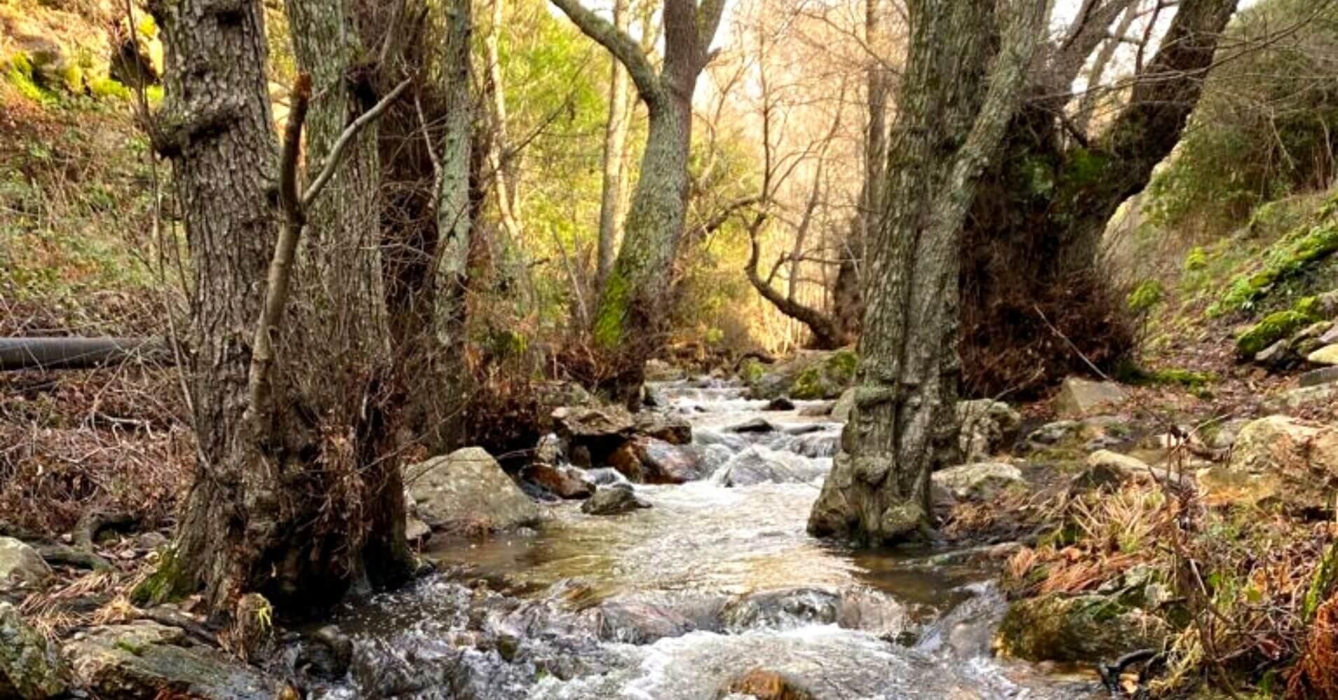 Río Cereceda, Fuencaliente. Ciudad Real, Castilla La Mancha.