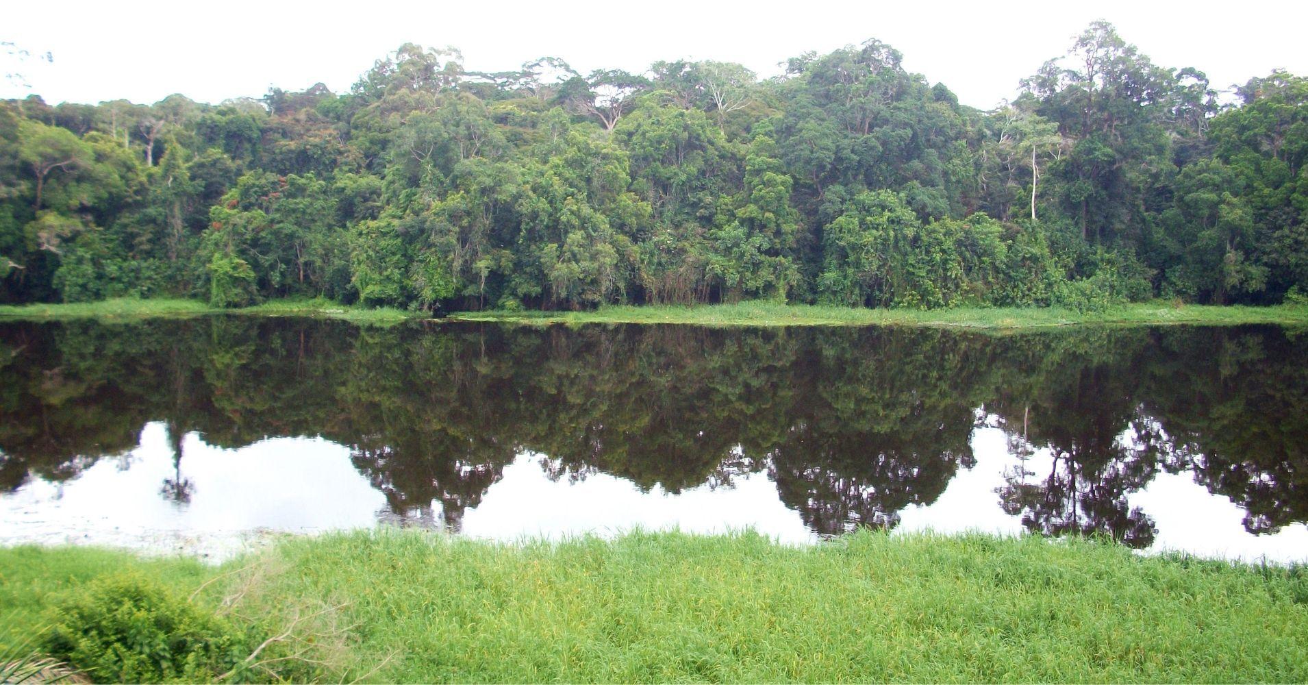 Río Nyong en Ebogo. Camerún.