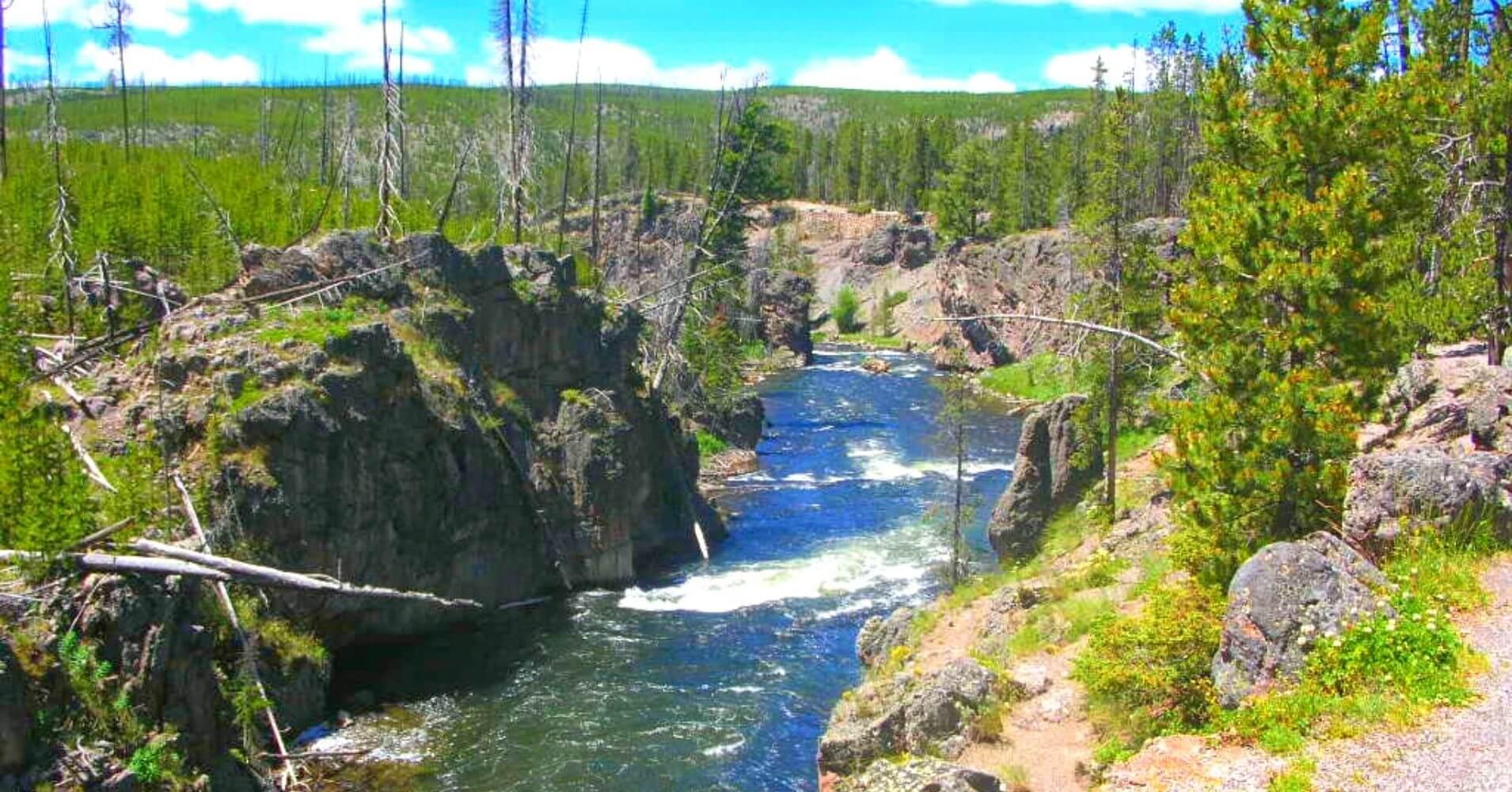 Río Yellowstone. Wyoming, Estados Unidos.