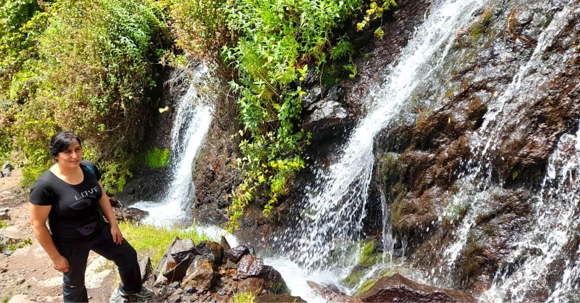 Road Trip Isla de la Palma. Nacientes de Marcos y Cordero. La Palma. Islas Canarias.