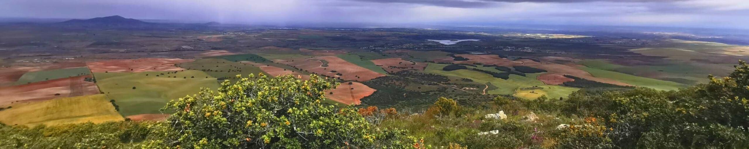 Sierra de Layos, Toledo. Castilla La Mancha.