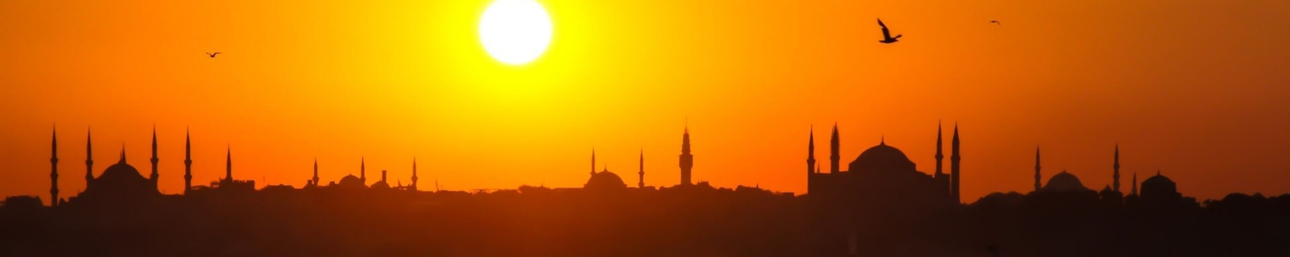 Viajar a Turquia. Estambul.