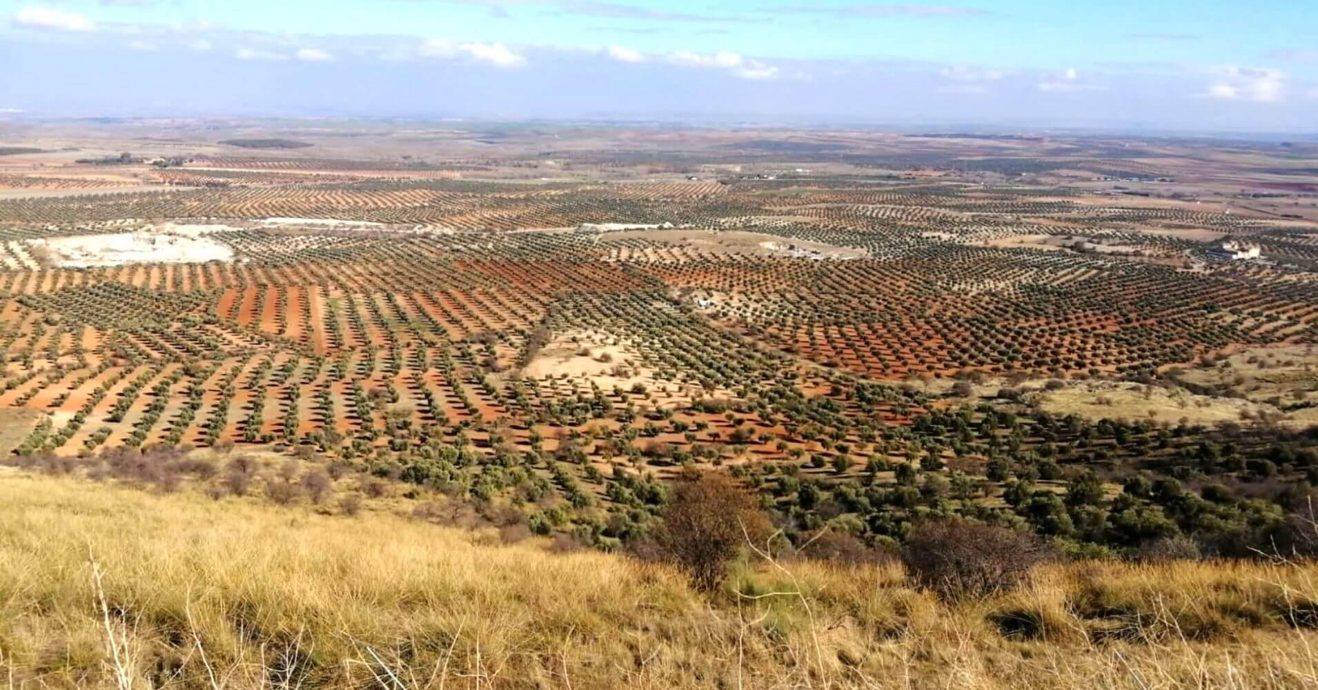 Vistas Panorámicas desde la Cumbre de Sierra de Nambroca y Cerro Marica. Toledo.