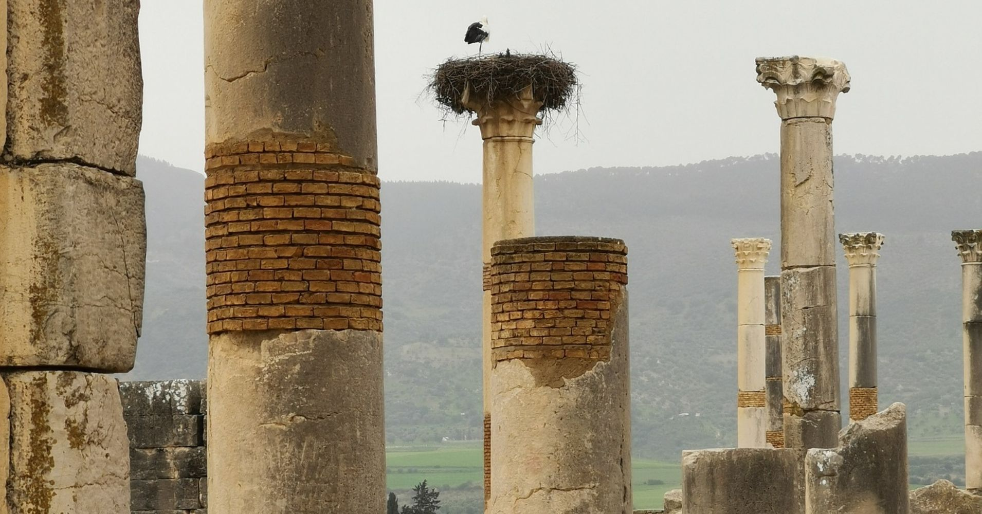 Volubilis, Mulay Idris. Marruecos.